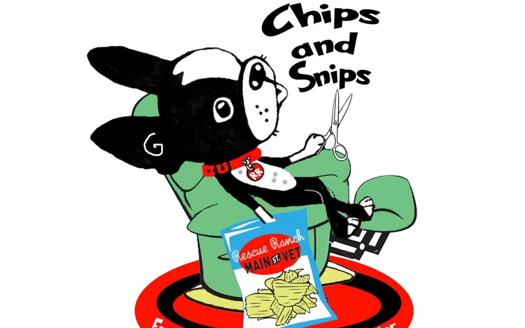Chips & Snips – Low Cost Spay/Neuter & FREE Microchips!